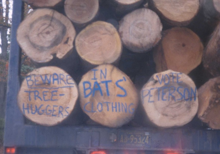 Figure 7: The Loggers Speak: 'Beware of Tree Huggers in Bats' Clothing' (photo by author)