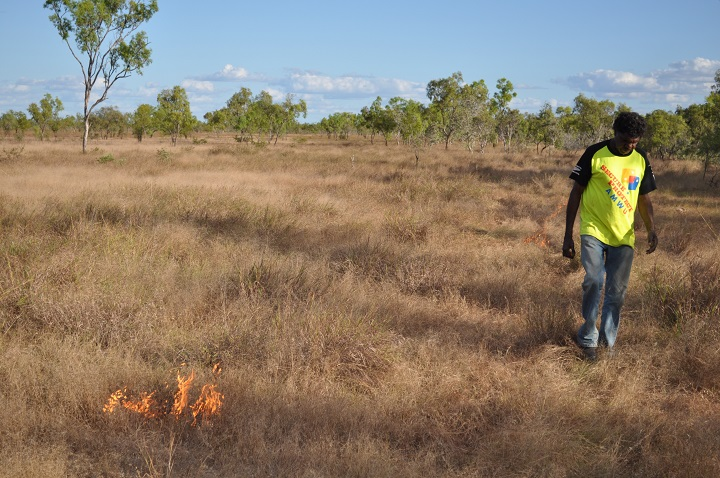 Figure 1: An Aboriginal man conducting early dry season burning in an ancestral estate area on coastal Ganggalida country, May 2012. Photograph by author.